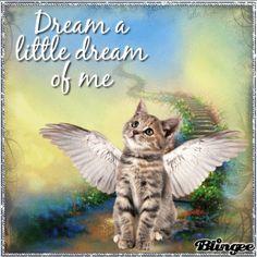 dream a dream never forget ...