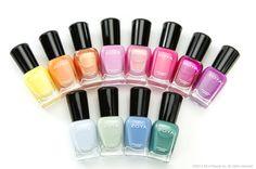 The 12 Color Cutie Shades!