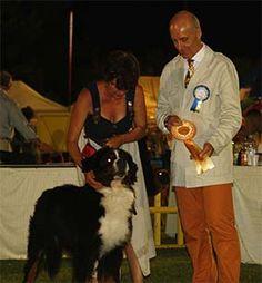 Con questo Cacib diventa campione internazionale   www.amicidizoe.com