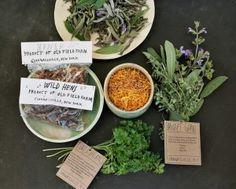 Mushrooms, Herbs and Tisane