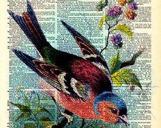 Vintage Dictionary Print - Colorful Rainbow Bird - Vintage Book Art Print - Woodland Natural History Upcycled Book Art - Welcome! Pop Art Bilder, Journal D'art, Journals, Vintage Book Art, Book And Frame, Newspaper Art, Book Page Art, Bird Art, Bunt