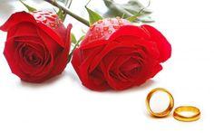 Red Rose Flower Images Free Download For Desktop http://www.etchdwallpapers.com/red-rose-flower-images-free-download.html #RedRose #FlowerImages #FreeDownload #ForDesktop