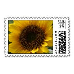 >>>Low Price          	Sunflower Postage Stamps           	Sunflower Postage Stamps In our offer link above you will seeHow to          	Sunflower Postage Stamps please follow the link to see fully reviews...Cleck Hot Deals >>> http://www.zazzle.com/sunflower_postage_stamps-172350431742640843?rf=238627982471231924&zbar=1&tc=terrest