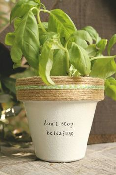 Dont Stop Beleafing! and pots available for your indoor herb or plant! Pot does not include plant. These hand painted and stamped pots are perfect for your indoor herb garden! All pots made by Plant Puns are sealed with an earth safe finish for safe