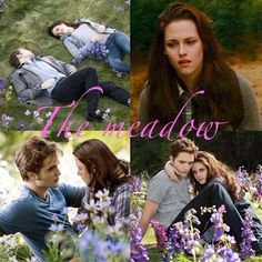 The meadow ❤