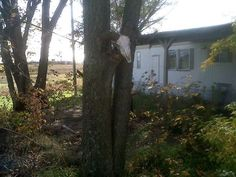 Trailer on the property of where Ken Rex McElroy once lived