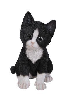 Black and White Kitten Black And White Kittens, Black White, Deer Statues, Garden Decor Items, Garden Ornaments, Pet Memorials, Teddy Bear, Kawaii, Animals