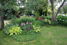 plantes d'ombre et fleurs multicolores - idées et conseils pour embellir le jardin