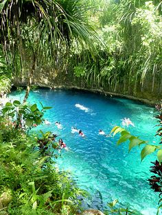 Next on my Travel Bucket list --> Enchanted River Hinatuan in Surigao Del Norte, Philippines Places Around The World, Travel Around The World, Around The Worlds, Great Places, Places To See, Beautiful Places, Dream Vacations, Vacation Spots, Enchanted River