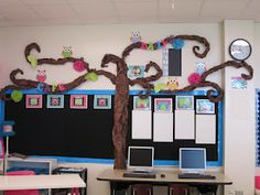 Love the tree above the bulletin board!!  But with birds, not owls :)