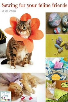 Sewing for Your Cat – Lovely Sewing Projects for Your Feline Friends