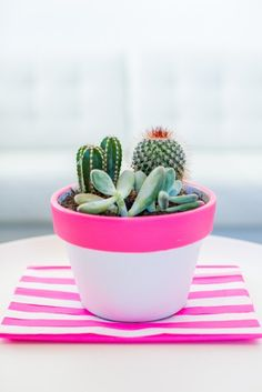 Not quite ready to tackle an outdoor garden? Plant the next best thing: some chic succulents and cacti in a colorful painted pot!