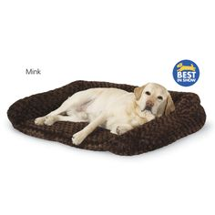 Animals Matter Katie Puff Sydney Ortho Bed - Dog Beds, Dog Harnesses and Collars, Dog Clothes and Gifts for Dog Lovers | In The Company Of D...