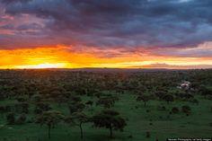 タランギレ国立公園(タンザニア)