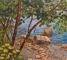 """Estate sul fiume"" olio su tela (70 x 80)"