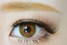 NEO Lucky CLover BRown circle contact lens
