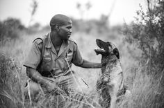 Singita's conservation initiatives span across five regions of Africa in three countries: South Africa, Tanzania and Zimbabwe. Sand Game, The Golden Compass, Kruger National Park, Belgian Malinois, Game Reserve, Weimaraner, Four Legged, Dog Days, Animal Kingdom