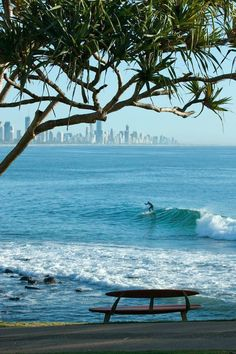 Burleigh Heads, Queensland, Australia, with Surfers Paradise in background. What a view. The bench made of surf boards is very creative. Queensland Australia, Gold Coast Queensland, Gold Coast Australia, Australia Travel, Australia Beach, Visit Australia, Victoria Australia, Western Australia, Ansel Adams
