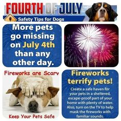 we're all ready. went to the vet for a prescription for Sassy. our big, tough German Shepherd turns into a bowl of jelly when she hears fireworks or thunderstorms!