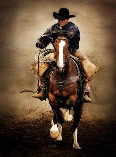 Cowboy working his horse