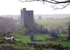 Carrigaphooca Castle (Castle on the Rock of the Fairies). Macroom, County Cork