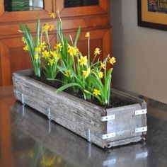 Make this beautiful rustic wood planter box to bring the outdoors in.  Easy to make, and a great way to welcome spring! Or hanging under a window outside, hmmm