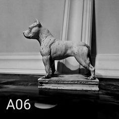 American Staffordshire Terier , Amstaff ze sklepu PigeonArtPL na Etsy American Staffordshire, Pigeon, Dogs, Etsy, Vintage, American Staffordshire Bull Terrier, Pet Dogs, Doggies, Vintage Comics