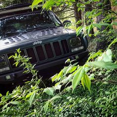 Like the Velociraptor the XJ hides in the shadows waiting for the perfect moment to strike.  #jeeposaurus #jeeposaur