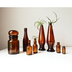 Brown Bottle Collection, 8 Amber Glass Vases (£39) ❤ liked on Polyvore featuring home, home decor, brown home decor, amber glass bottles and brown bottle