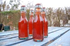 This outstanding nettle cordial recipe makes a wonderfully refreshing Springtime drink. Very different to your usual cordial recipe.Read more! Conservation, Cordial Recipe, Kefir Recipes, Fermentation Recipes, Fruit Drinks, Beverages, Alcohol Recipes, Weed Recipes, Drink Recipes