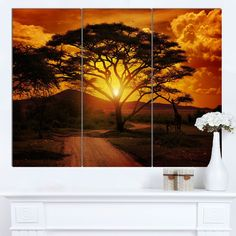 Designart 'African Sunset with Lonely Tree' Extra African Landscape Canvas Art