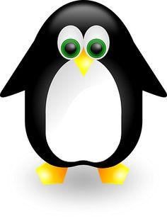 Пингвин, Животных, Милый