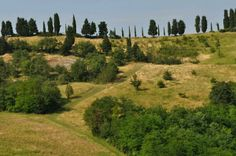 @itsOriana_: #TheGreatBeauty in Italy is everywhere! Parco dei Gessi Bolognesi e Calanchi dell'Abbadessa #Bologna #ITisMe