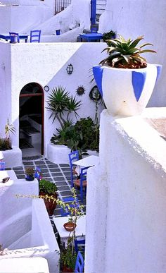 white and blue.. Santorini Island (Cyclades), Greece | Flickr - Photo by Hydraheerd°°