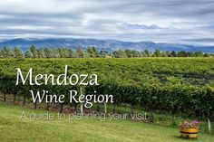 Advice on how to plan a visit to the Mendoza wine region. Suggestions on wineries to visit in Maipu Valley, Lujan de Cuyo, and Uco Valley.