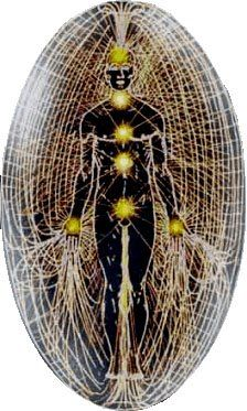 The human body is a cosmic listening post in a vast ocean of frequencies and vibrations of energy. We have connections to energy fields all around and within us.
