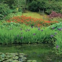 In times past, artificial ponds, lakes, fountains and water cascades were possible only in grand gardens. Now anyone can easily devise a water feature to suit their garden and their budget, and enjoy the enchantment, peace and serenity it brings.