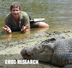 1 hour north of Brisbane: Australia Zoo (Steve Irwin) - $59 admission