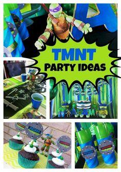 Teenage Mutant Ninja Turtles Party Ideas!