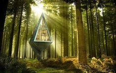 Innovative Architecture Amidst The Trees - http://blacklemag.com/design/innovative-architecture-amidst-the-trees/