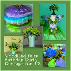 Enchanted Fairy Birthday Party Package for twelve - tutus - wings - wands - centerpiece