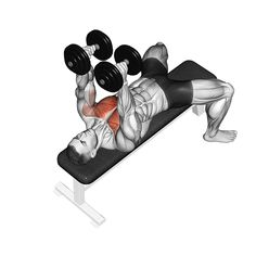 Chest exercises dumbbell: GIF from the exercise Flys. Fitness Workouts, Gym Workout Tips, Best Cardio Workout, At Home Workouts, Chest Workout For Men, Chest Workout Routine, Chest Workouts, Chest Exercises, Dumbbell Fly