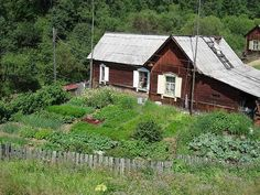 A typical Russian garden by uncommon vistas on Flickr