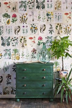 Best Retro home decor ideas - Super retro and warm information. retro home decorating bedroom image plan ref 1567512050 pinned on this day 20190609 Green Sofa, Green Walls, Aesthetic Rooms, Retro Home Decor, Home And Deco, Interior Inspiration, Interior Ideas, Interior Modern, Minimalist Interior
