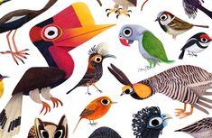 illustration - Cerca con Google
