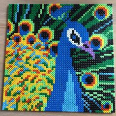 Peacock hama beads by sandramhamre