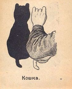 Useful for Cat Ladies and Gents!