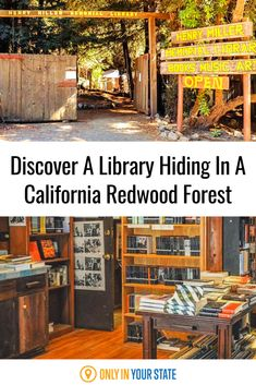 Have you ever been to a library in a forest? Walk into a fairytale at the Henry Miller Memorial Library in Big Sur. Find an eclectic collection of books that will be a brand new library experience that is perfect for bookworms. Don't forget to check out the art center and performance stage as well to see why this library is on every book enthusiast's bucket list. Bucket List Destinations, Amazing Destinations, Travel Destinations, Central California, Northern California, Redwood Forest California, California Attractions, Best Bucket List, Famous Beaches