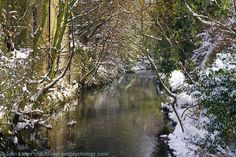 Winter Reflections in the River Dour, Pencester Gardens, Dover, Kent, England, UK. View from Dieu Stone Lane foot-bridge (Maison Dieu Road) of river heading towards the sea. Urban park opened 1924, now has lawns, flowerbeds, trees, children's playground, millenium bandstand pavilion, timeline path engraved with town history. Sports facilities: Cycling (BMX), skate boarding, and in-line skating. Snow, Nature, Parks and Gardens, Recreation and Leisure. See http://www.panoramio.com/photo/449393...