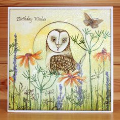 Twelve Cats Crafting: My Hobby Art Design Team Sample Cards Owl Card, Bird Cards, Card Making Techniques, Pretty Cards, Flower Cards, Hobbies And Crafts, Clear Stamps, Birthday Wishes, Owls